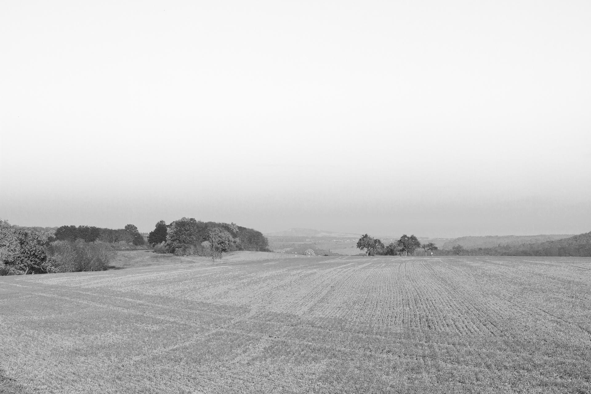 Altenkirchen_Landscape_01