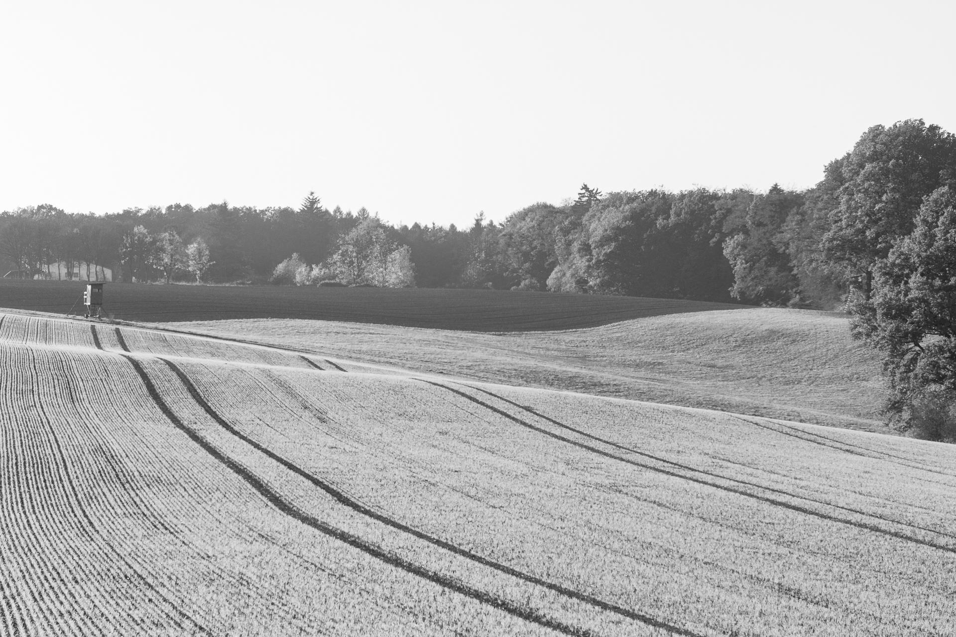 Altenkirchen_Landscape_04